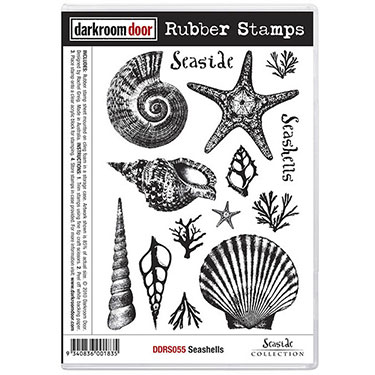 Pre-Order - Darkroom Door - Rubber Stamp Set - Seashells - Click Image to Close